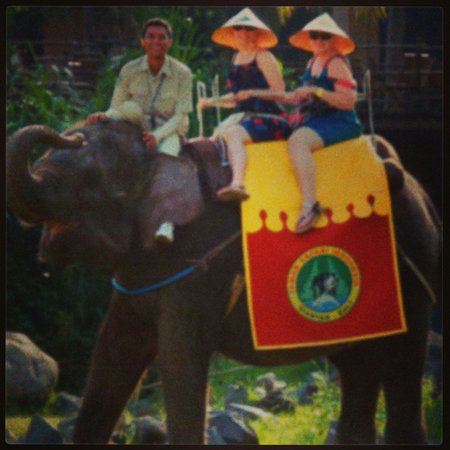 Bali Safari & Marine Park : Elephant ride February 2014