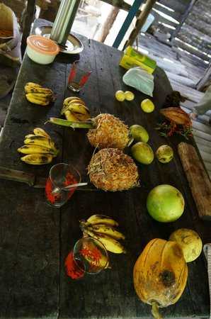 Hotel El Castillo: Kakao- und Obstplantage (geführter Tagesausflug)