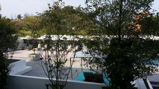 Nap Patong: vue de la chambre