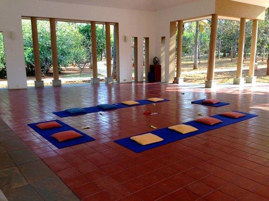 Shreyas Yoga Retreat: Yoga hall