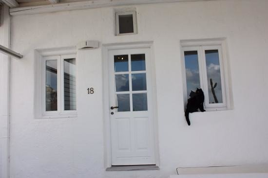 Porto Fira Suites : 占有テラスから続くちっちゃい扉が部屋の入り口。猫が遊びに着ます!