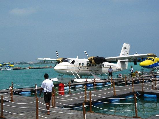 Kuredu Island Resort & Spa: Sea Plane