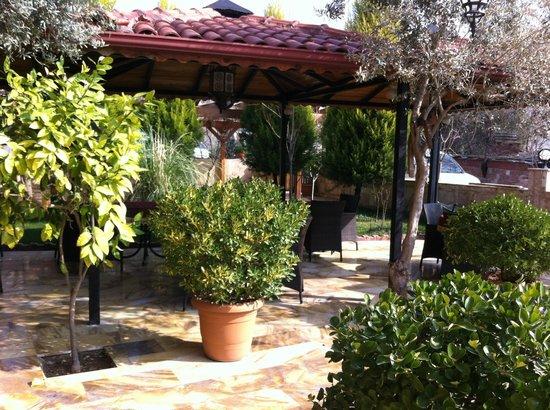 Venus Hotel: Şirinlik bahçesi