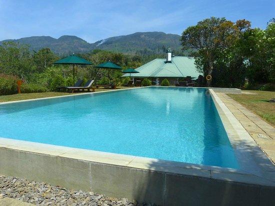 Ceylon Tea Trails: Pool