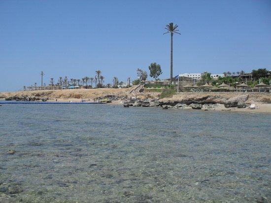 Queen Sharm Resort: veduta dalla piattaforma barriera corallina