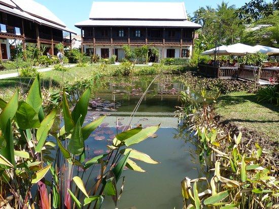 Sanctuary Luang Prabang Hotel: le bassin