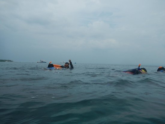 Bali Jet Set Dive and Marine Sports : snorkelling