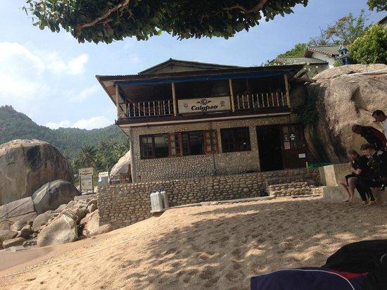 Calypso Diving - Koh Tao: Tauchschule Calypso Diving