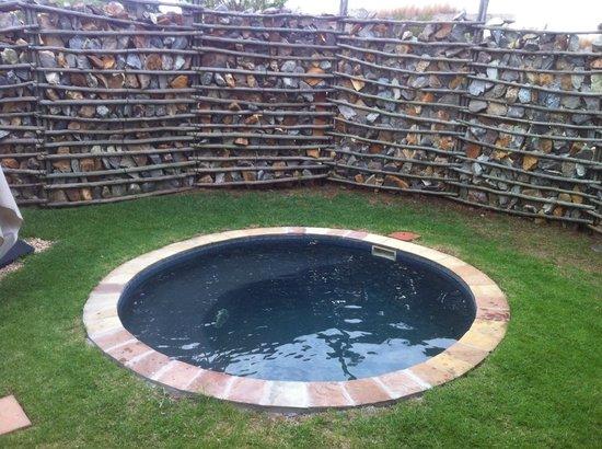 Forum Homini Hotel: plunge pool