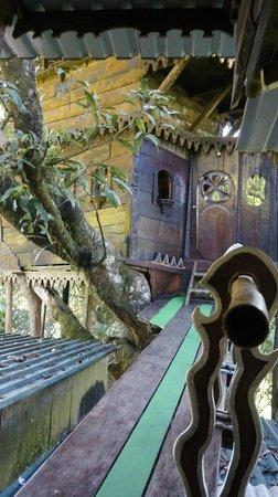 Casa del Arbol: treehouse2
