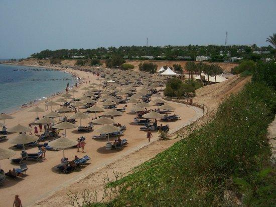 Domina Coral Bay Aquamarine Hotel : пляжики