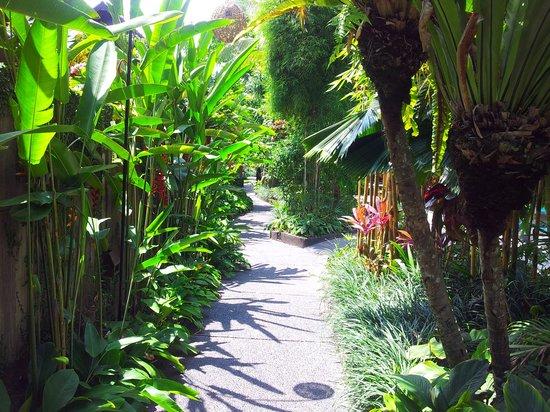 KajaNe Mua Private Villa & Mansion: gardens at Kajane Mua