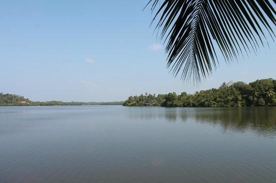 Asian Jewel Boutique Hotel: View of lake