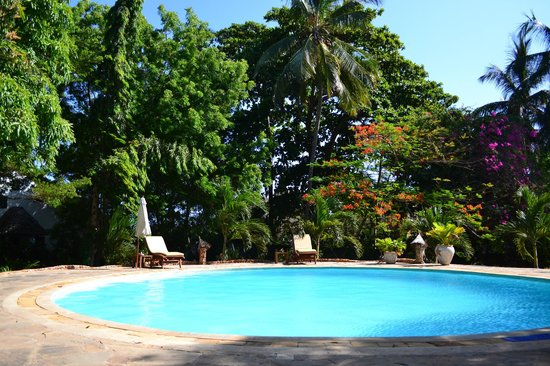 Mbuyu Beach Bungalows: Pool