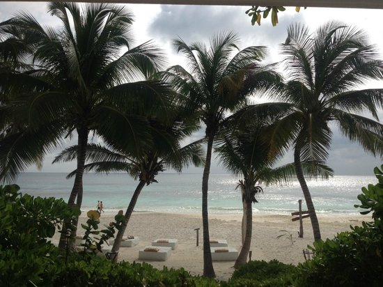 The Beach Tulum: Our view from the room