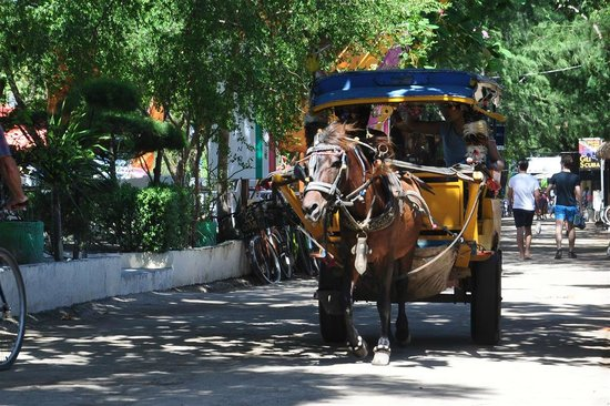 Gili Smile Bungalow: Horsecart