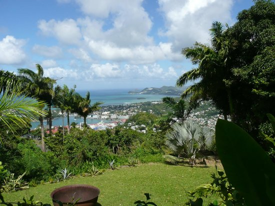 The Pink Plantation House: View from Reataurant