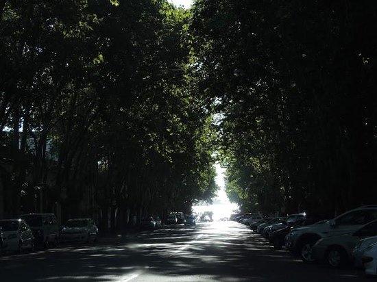 Hotel Esperanza & Artemisa Spa: Rua do Hotel
