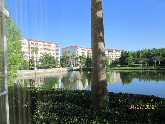 Marriott's Grande Vista: View from patio