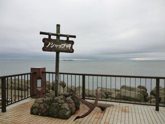Cape Noshappu: ノシャップ岬