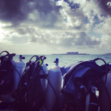 Casa del Mar Scuba Diving: Tanks ready