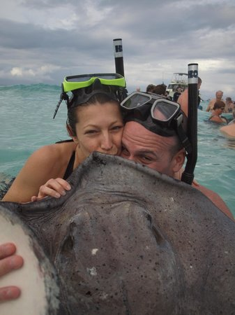 Captain Marvin's: Kissing a stingray for 7 years of good luck!