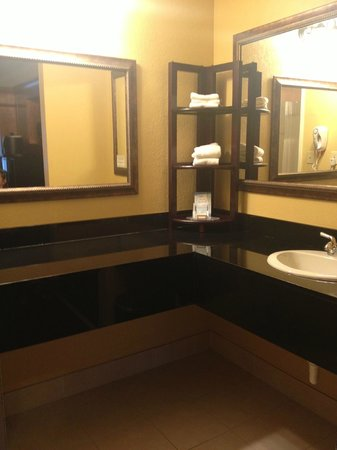 Baymont Inn & Suites Celebration: Vanity area