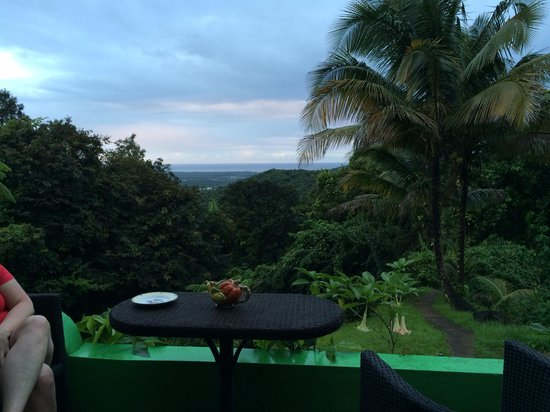 Carole's Rainforest Villas: View from the outdoor kitchen !
