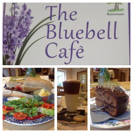 The Bluebell Cafe at Barrowmore: Visit The Bluebell Cafe for fresh home-cooked food and a warm welcome from our friendly staff an