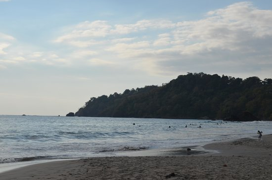 Playa Manuel Antonio : La playa