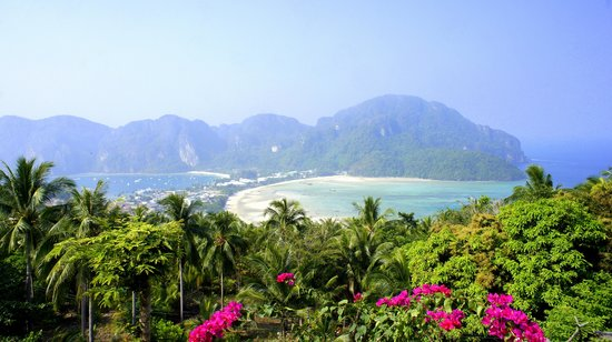 Phi Phi Arboreal Resort : красоты Пхи Пхи Дона