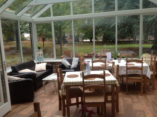 The Bluebell Cafe at Barrowmore: Take in our woodland view in our cosy conservatory.