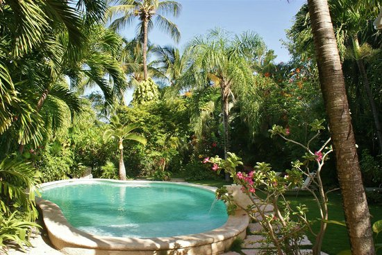 Siboney Beach Club: The pool nestled in our lush gardens