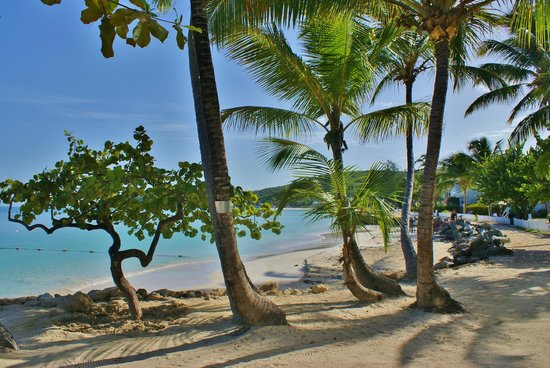 Siboney Beach Club: A view towards Dickenson Bay