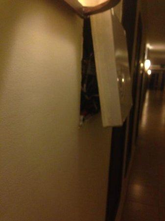 Aqua Fun Club: Wires hanging looose in corridors