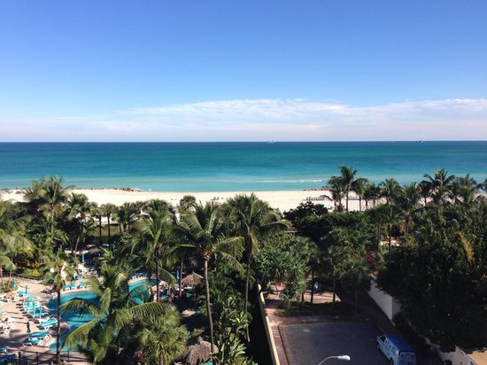 Hotel Riu Plaza Miami Beach: Room view