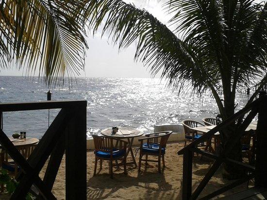 Scuba Lodge & Suites: Terrace for a sundowner