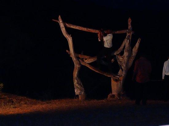 Ngulia Safari Lodge: Brave staff hang the goat meat... minutes later leopard arrives!