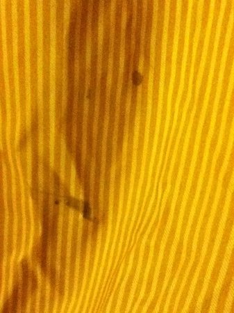 Quality Inn West Acres: Disgusting curtains