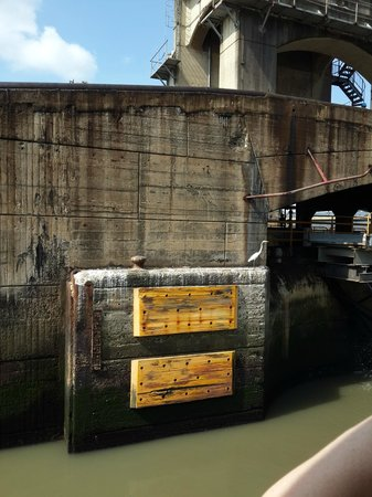 Panama Canal Tours: THE WALLS OF CANAL Civil Engineering at the top