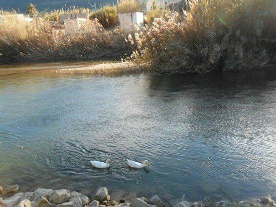 Blanca, España: Descenso por el rio