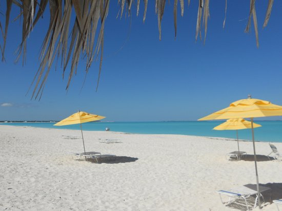 Treasure Cay Beach, Marina & Golf Resort: Beach view from palapa shows umbrellas