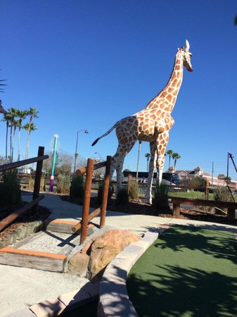 Mighty Jungle Golf, LLC: View from the mini golf