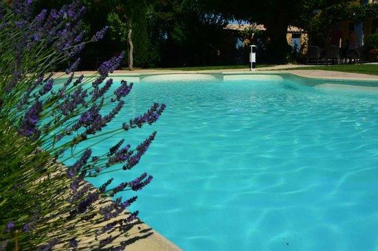 Le Mas au Portail Bleu : La piscine chauffée