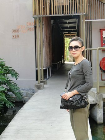 Belum Rainforest Resort: Pathway of hotels