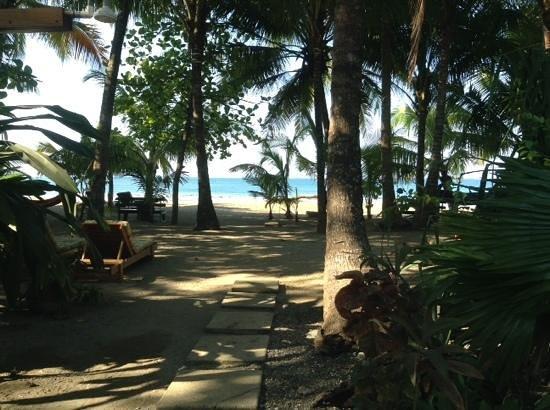 Fenix Hotel - On The Beach: enjoy the view!