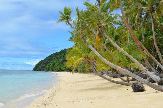 Namena Island Dive Resort: Namena Island Resort Beach