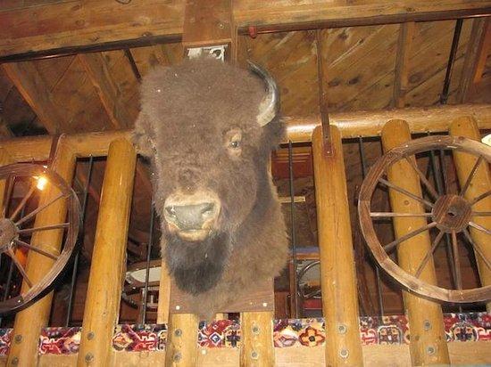 Rustler's Rooste: ei fu un bisonte