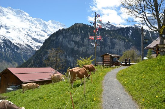 Pension Gimmelwald: Trail up to the outdoor seating