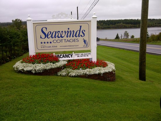 Seawinds Cottages: Pretty Flowers Around The Property